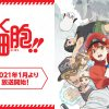 MUSIC - TVアニメ『はたらく細胞』公式サイト | 特別編「風邪症候群」Blu-ray&DVD 3